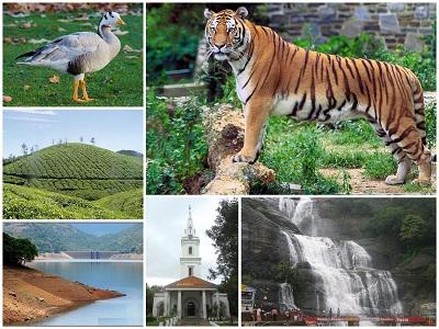 About Tirunelveli