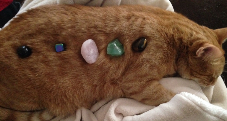 Crystal Stones Placed On A Cat.